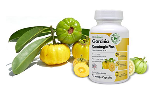 Garcinia Cambogia Plus with 95% HCA
